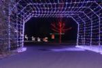 The Holiday Nights Drive through winter wonderland